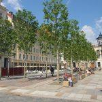 Bäume und Bänke im öffentlichen Raum
